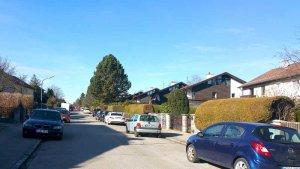 Immobilienpreis Zamdorf